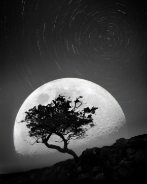 Music is the moonlight in the gloomy night oflife*